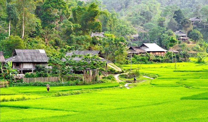 Experience unique nature in Van Ho