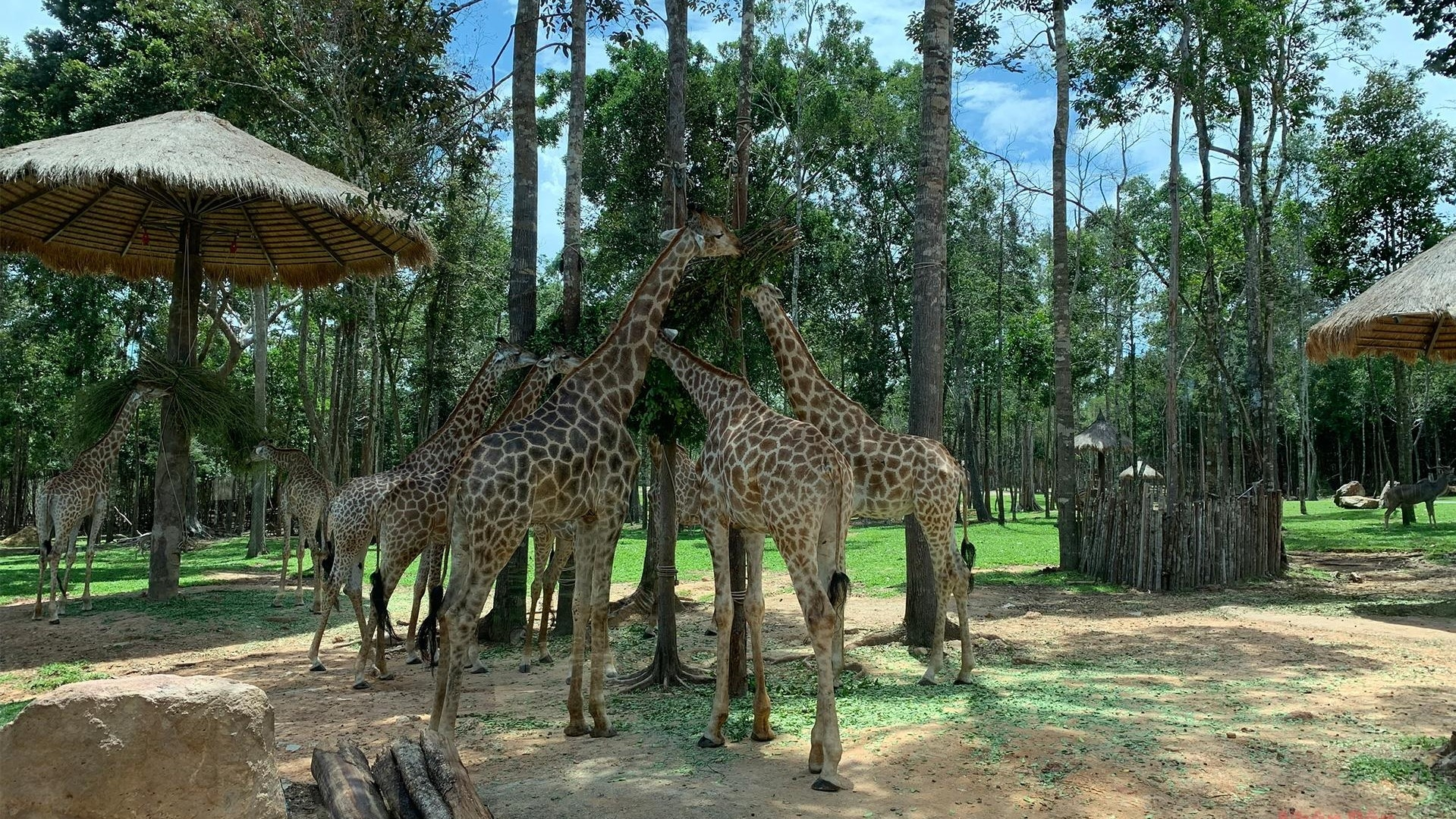 Great experiences in wildlife park on Phu Quoc Island